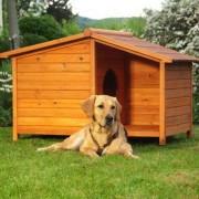 будка для собаки usadbamasterov.ru