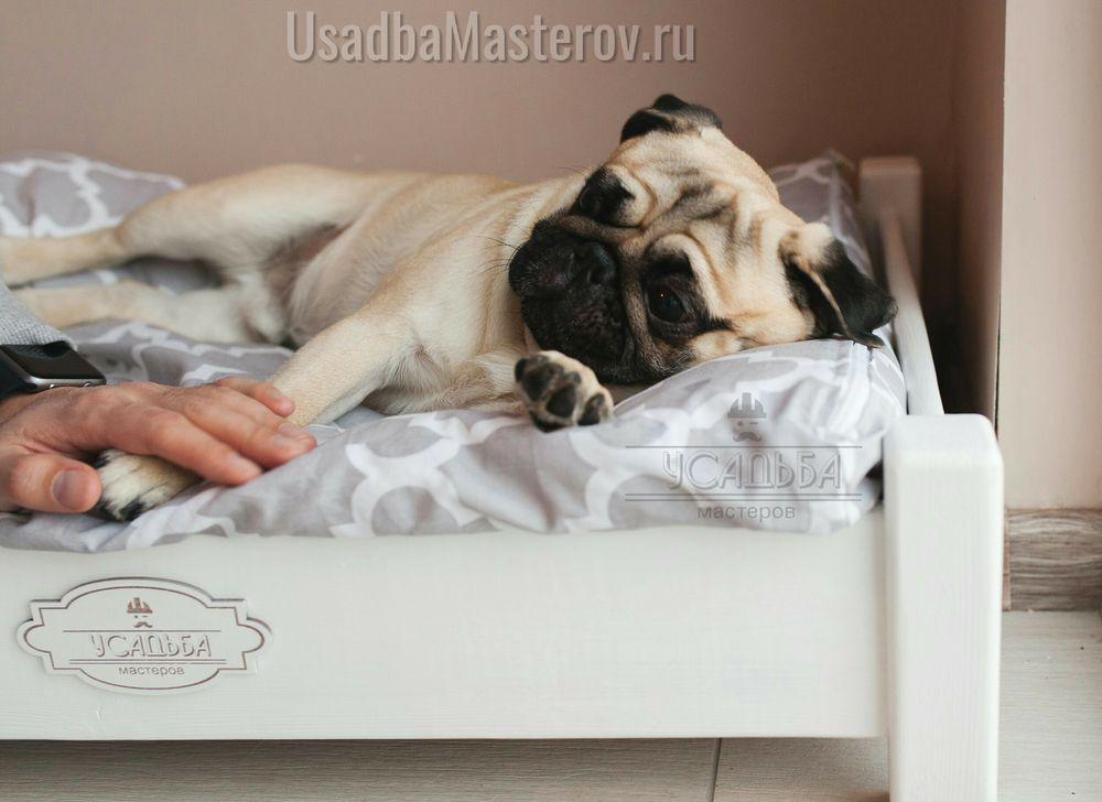 лежанка для мопса с подушкой