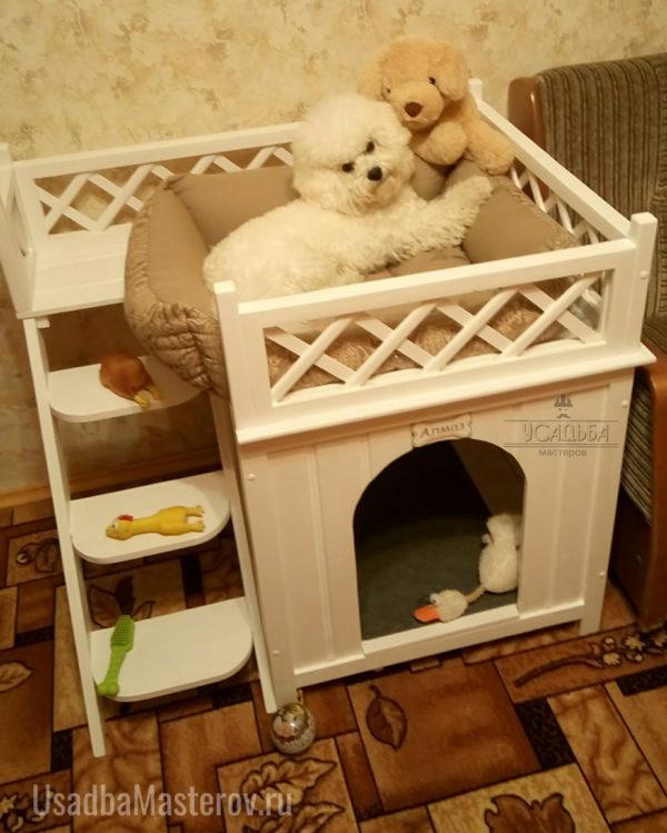 домик-небо-для-собаки