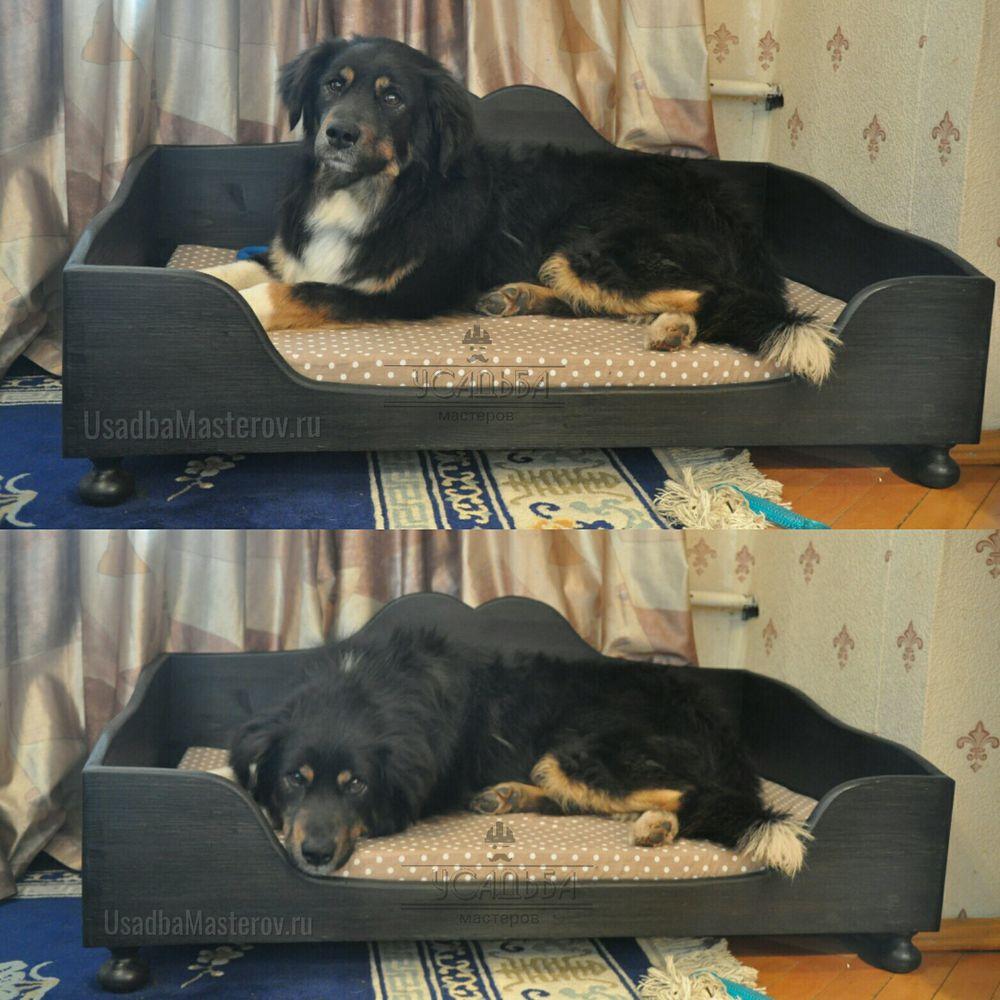 кроватка для собаки в квартиру усадьбамастеров