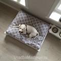 кроватка-для-собаки-усадьбамастеров