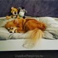 как-приучить-собаку-спать-на-кроватке