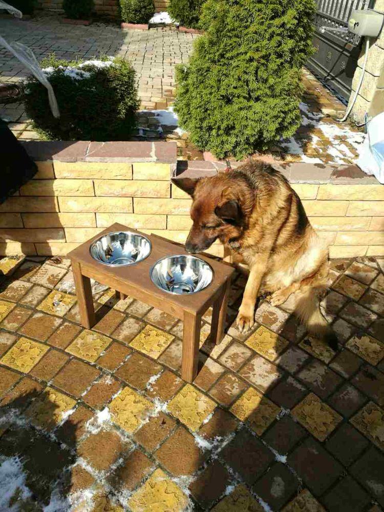 подставка-с-мисками-уличная-для-собаки