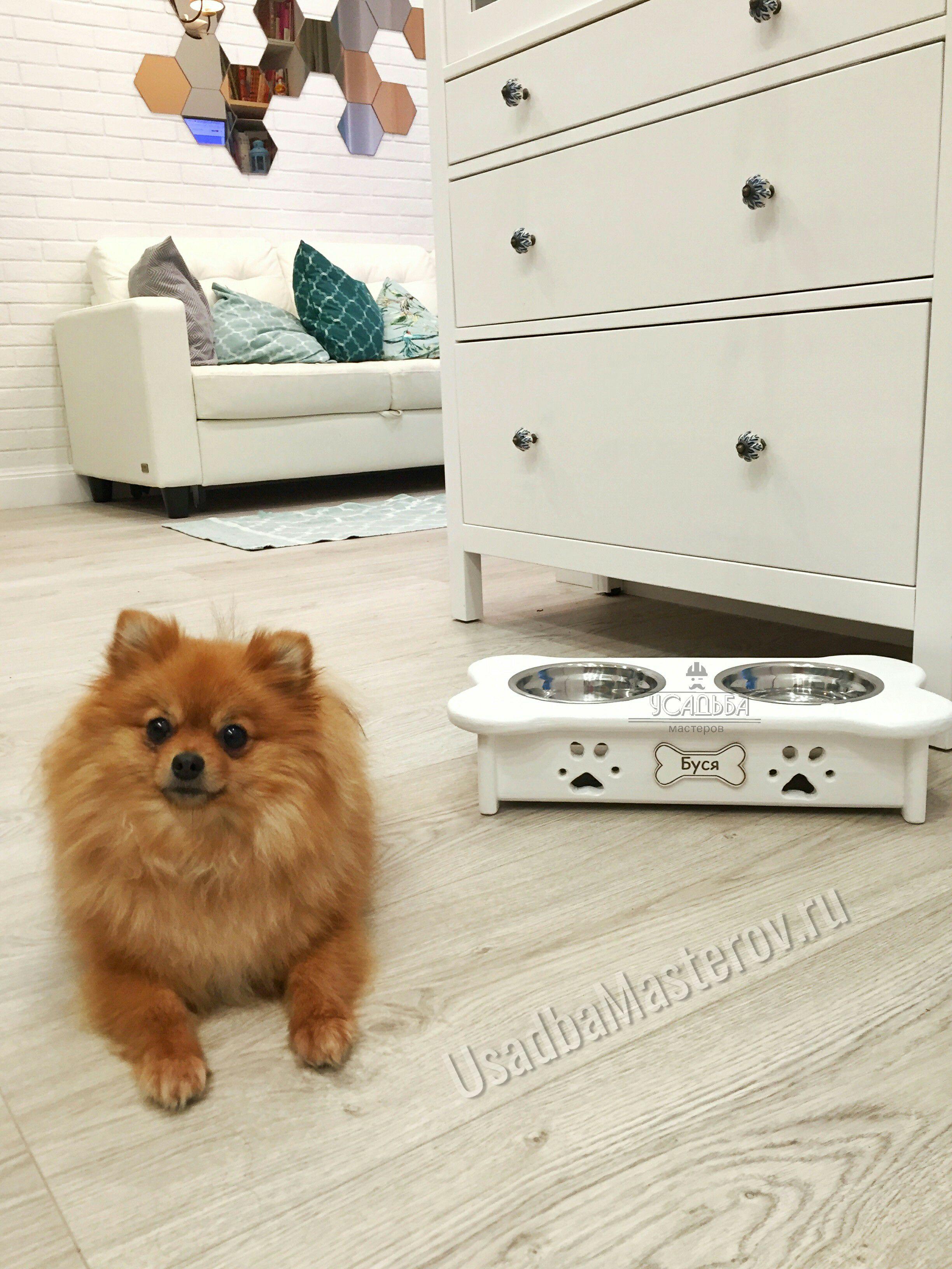 подставка для собаки с мисками