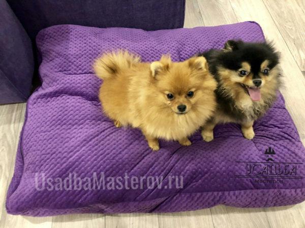 подушка-для-собак