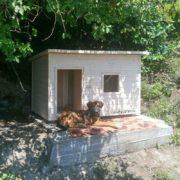 будка для алабая с тамбуром