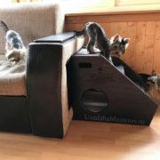 прикроватная-лесенка-для-собак-с-домиком-усадьмастеров