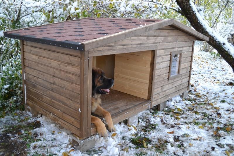 Теплая будка для овчарки своими руками