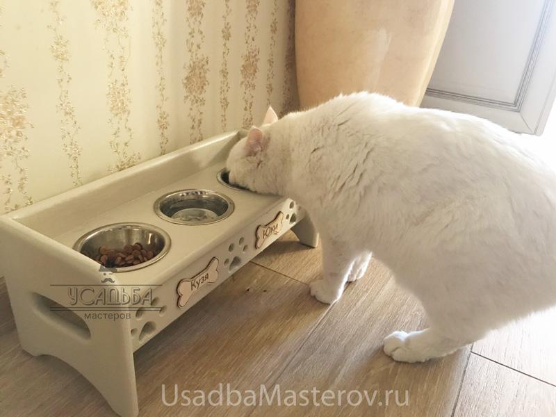 миски-для-кошки