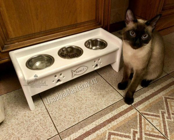 подставка для сиамского кота в квартиру