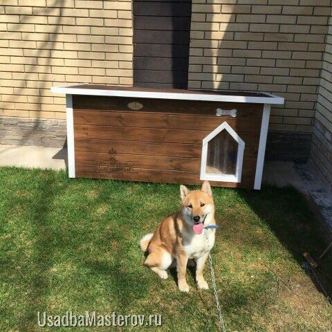 Утепленная будка с тамбуром для средней собаки — Питомник №2