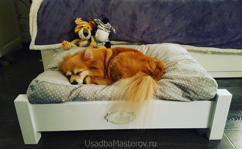 лежак-для-маленькой-собаки-купить-усадьбамастеров