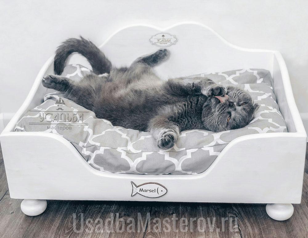 лежанка-для-вислоухой-кошки
