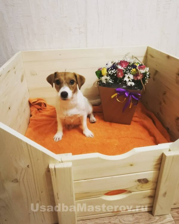 Манеж для собак 80x80x42 см