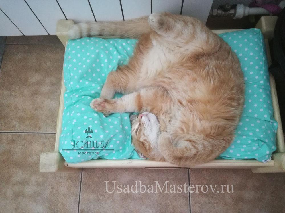 кроватка-для-кошки-усадьбамастеров