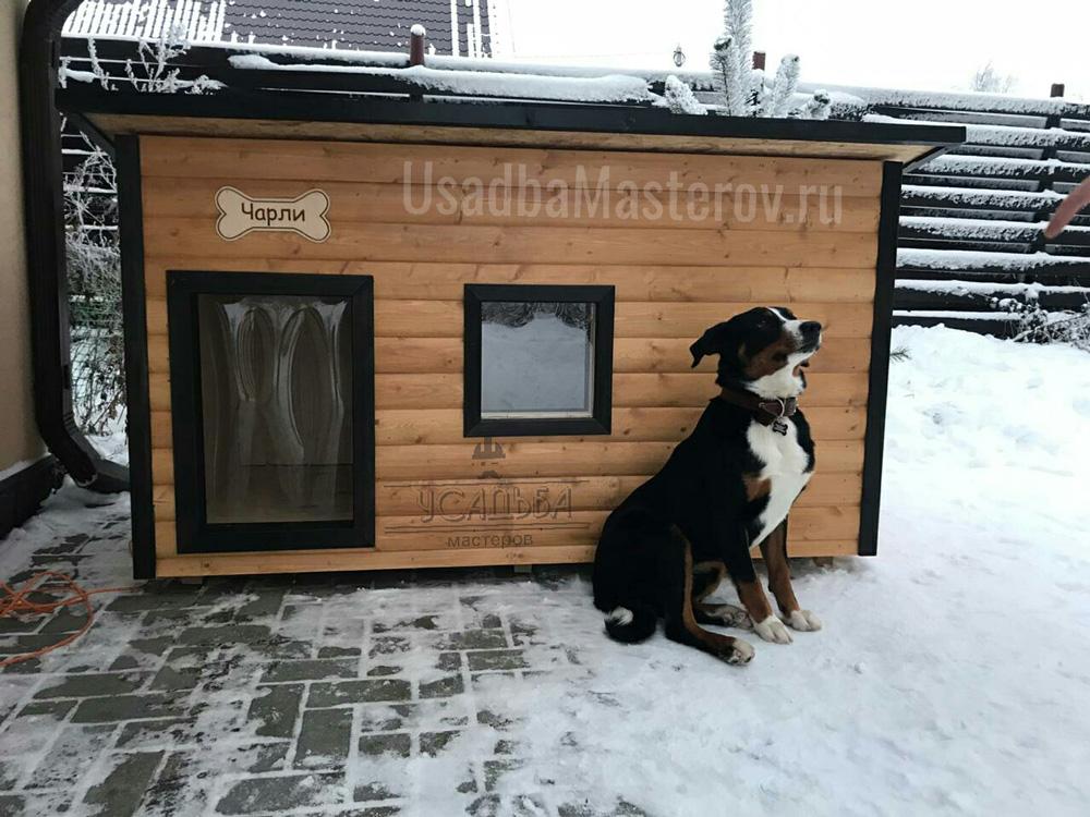 Картинка собаки с надписью теперь перезимуем а теплых будках, юбилеем доу картинки