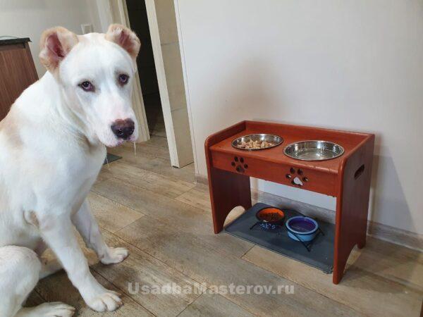 Кормушка для собак и кошек с бортиком