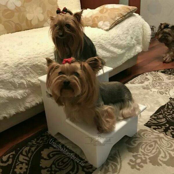 """Прикроватная лесенка для собак с ящиками """"Классик"""""""