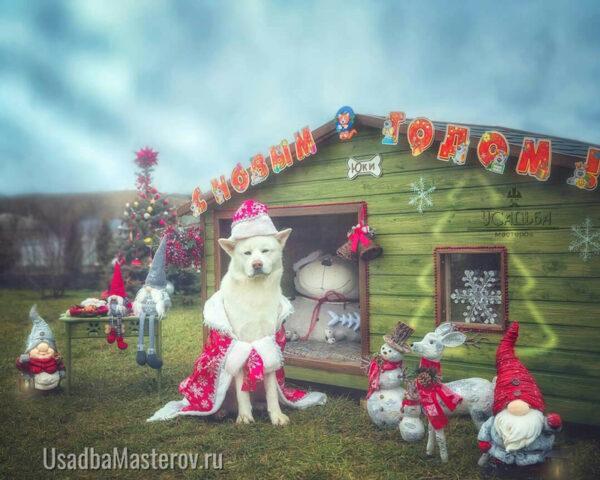 будка-для-акиты-зимой