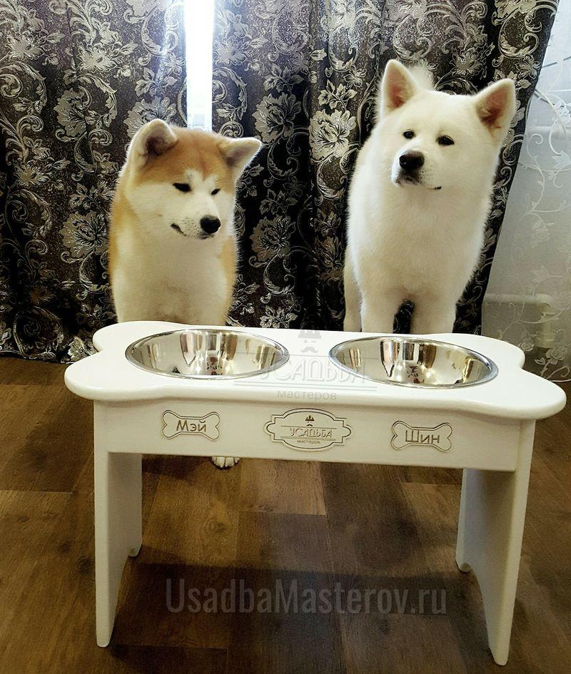 подставка-с-мисками-для-акиты-ину-кормушка-для-больших-собак
