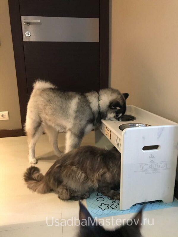 Кормушка для кошек и собак «Тандем»