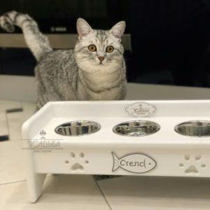 подставка с Мисками для кошек