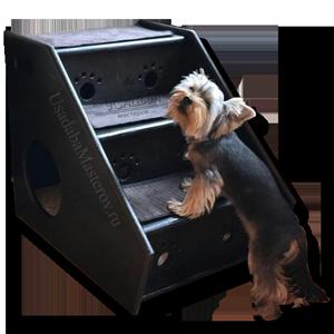 лесенка-для-собаки