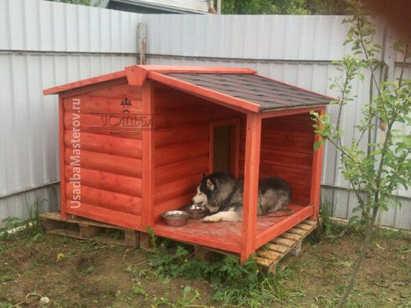 Будка для собаки с верандой «Барни»
