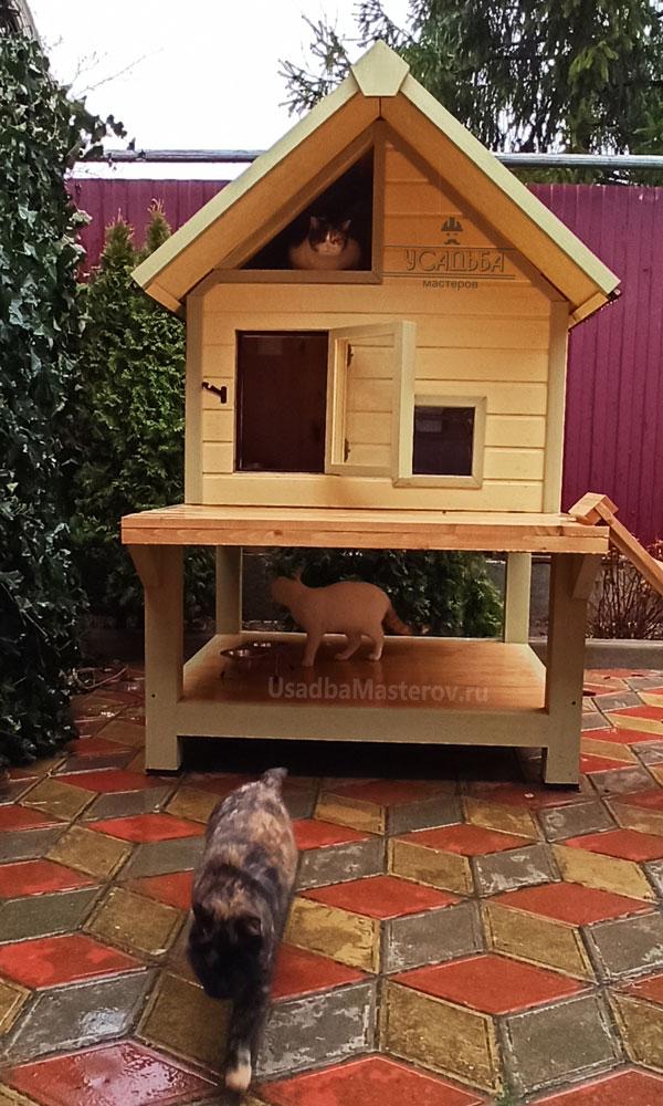 будка-для-кошек-купить