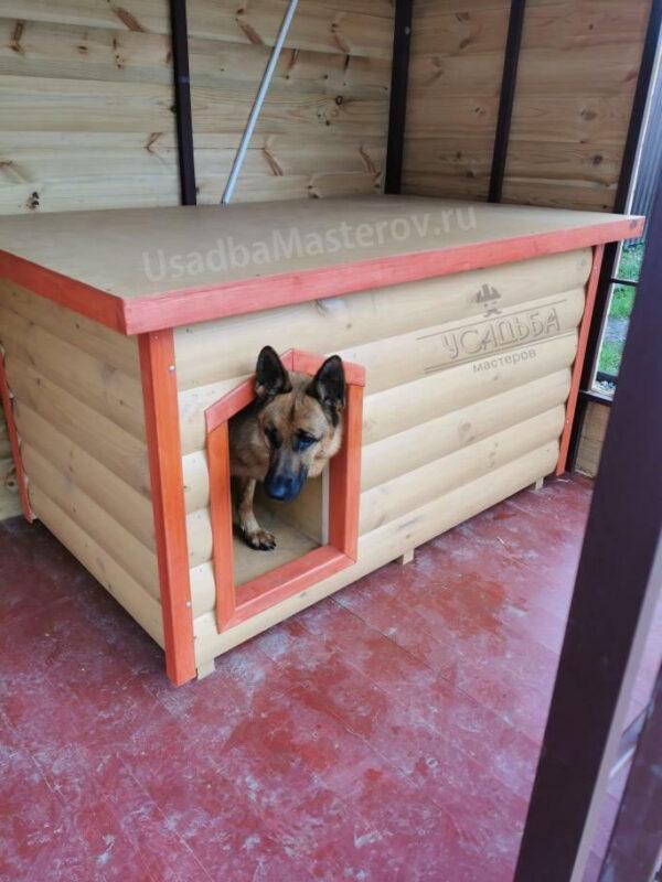Утепленная будка для собаки в вольер с тамбуром